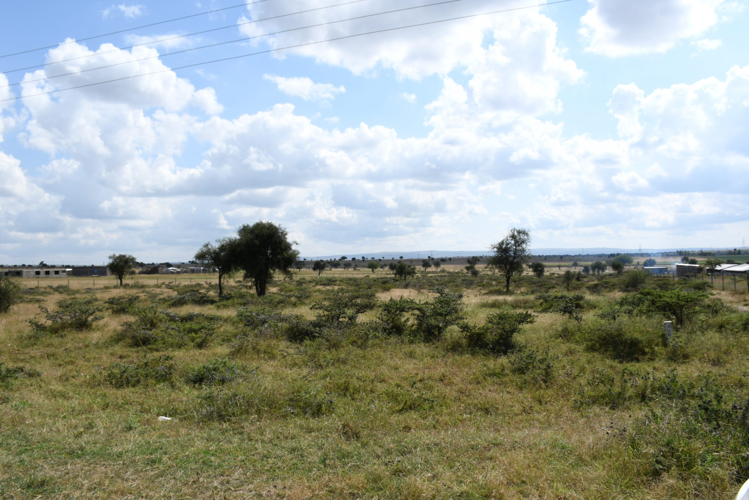 Why land remains an ideal investment option